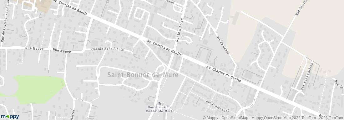 Saint Bonnet De Mure Les Eagles From Saint Bonnet Sur Le