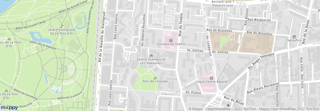 Mairie Villeurbanne Adresse Horaires