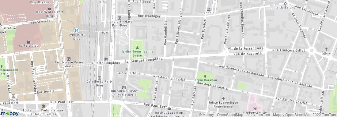 Adresse Ccas Ville De Lyon