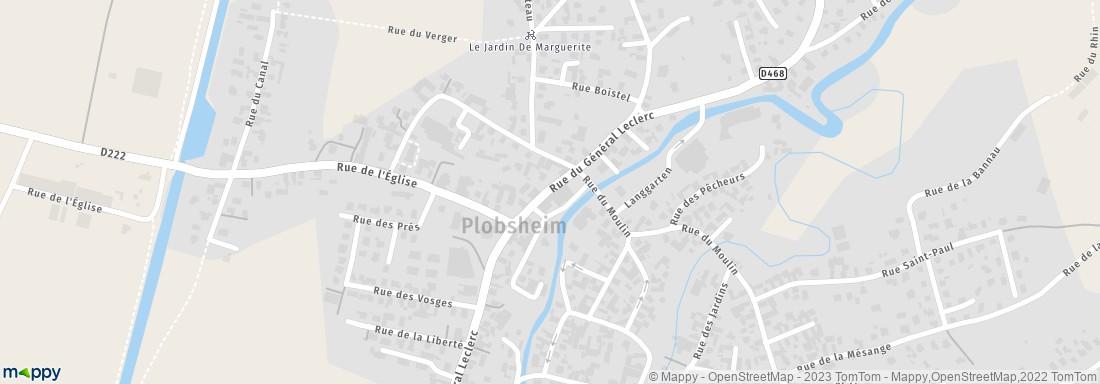 Millesimes et plaisirs plobsheim