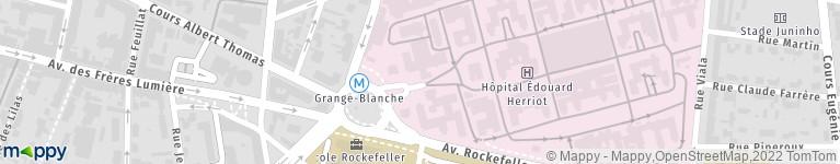 Hopital Edouard Herriot Hcl Lyon Hopital Adresse Horaires