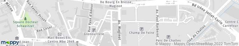 Cabinet Boisson Immobilier Bourg En Bresse Agence Immobiliere